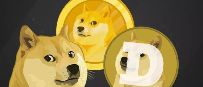 Dogecoin Price Plunges Caused By Elon Musk's SNL Appearance